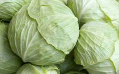Raw Cabbage, Cabbage Leaves, Cabbage Health Benefits, Braised Cabbage, Kidney Cancer, Colon Cancer, Cancer Cure, Breast Cancer, Thing 1