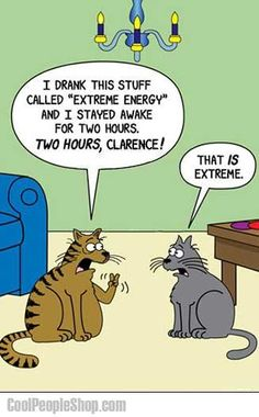 a cat awake for 2 hours?  yikes!