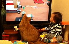 21 Gifs Of Kids VS Pets… The Good, The Bad, And The Funny