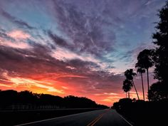 #fromwellington #view #sky #clouds #blue #florida #sunrise #jibarosenlaluna #boricuas #streetview #viewfrommywindow #driving #love #familia #tomiamilakes #beforework #palms #spring #awesome #beautiful #equestrianneighborhood #equestrian #poloclub