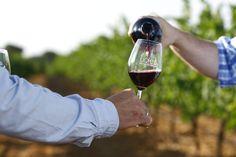 ¿Quieres saber más acerca de nuestra D.O.? Entra y conoce todo acerca de Vinos de Ucles