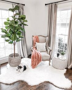 Spring home decor ideas Neutral farmhouse living room decor Wingback chair Curtains White faux fur rug Fiddle leaf fig tree Pouf ottoman Large basket target Glam Living Room, Rugs In Living Room, Living Room Designs, Living Room Decor, Feng Shui, White Faux Fur Rug, Home Decor Baskets, French Country Living Room, Country Rugs