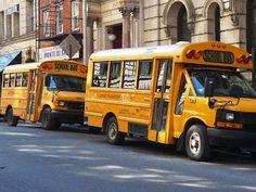 #School Bus!