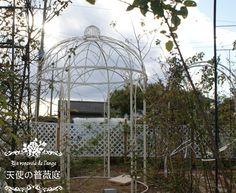 庭 2011 12月 ホワイトガゼボ