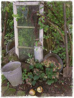 Wir waren schon lange nicht mehr im GARTEN ...also auf geht`s... kommt ihr mit ????????????  Verwässerte Hortensien...   Zieräpfelchen ,die ...