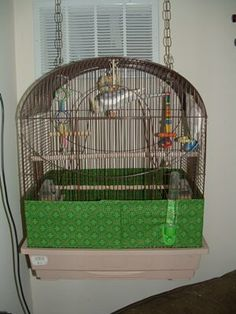 Seed catcher to keep my bird's seed off the floor. . .awesome idea!