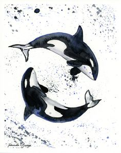 Orca Whales Watercolor Print - Wall Art - Ocean Decor - Whale Art - Whale… art bathroom Items similar to Orca Print - Whale Art - Coastal Wall Art - Nautical Print - Trending Now - Nursery Wall Decor - Bathroom Wall Art - Killer Whale on Etsy Orca Tattoo, Whale Tattoos, Arte Orca, Orca Art, Orcas, Orca Kunst, Animal Drawings, Art Drawings, Killer Whales