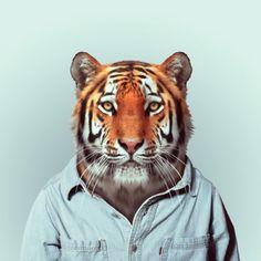 Zoo Portraits / Yago Partal   AA13 – blog – Inspiration – Design – Architecture – Photographie – Art