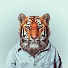 Zoo Portraits / Yago Partal | AA13 – blog – Inspiration – Design – Architecture – Photographie – Art