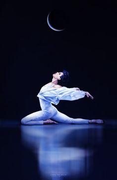 Swan #Kai