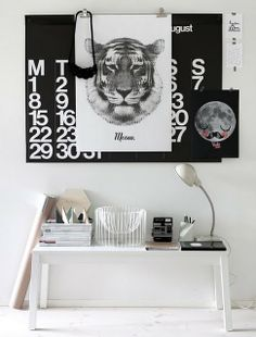 Black & White Tiger in the bedroom!