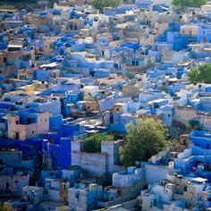 Jodhpur is the second largest city in Rajasthan in India and is also known as the blue city because the color gives an indigo aura to it with blue colored houses surrounding the Mehrangarh Fort. Places Around The World, The Places Youll Go, Places To See, Around The Worlds, Jodhpur, Socotra, Virgin Gorda, New Delhi, Nepal