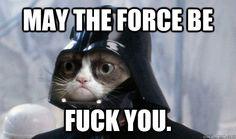 #grumpycat