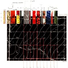 a planting calendar from James Corner Field Operations - not sure how to read it but like the visuals Architecture Mapping, Architecture Graphics, Architecture Drawings, Architecture Portfolio, Architecture Diagrams, Architecture Panel, Architecture Design, Landscape Diagram, Landscape And Urbanism