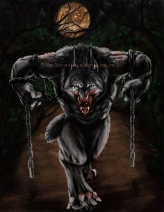 Lunar Cycle's Peak by Saoirsa on DeviantArt Werewolf Tattoo, Werewolf Art, Fantasy Creatures, Mythical Creatures, Anime Wolf Drawing, Primitive, Vampires And Werewolves, Wolf Moon, Classic Monsters
