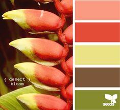 pretty colors.