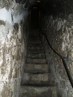 Romania: Bran Castle near Brașov. Inside Castles, Dracula Castle, Palaces, Romania, Kale, Places To Visit, History, Travel, Earth