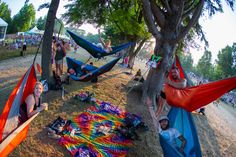 30 Magical Photos of Electric Forest Festival 2014