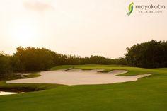 Ya sea para descansar y relajarse o para jugar en el campo de golf... Los domingos son perfectos para disfrutar lo que más te gusta #golf #ElCamaleon #PGATour #PLAYMayakoba