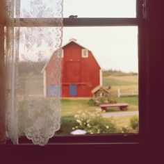 looking out an old farmhouse window, with old lace curtains, seeing an old red barn
