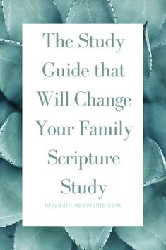 The Study Guide that Will Change Your Family Scripture Study – LDS Youth Leadership Meditation Methods, Types Of Meditation, Family Scripture, Scripture Study, Leadership Activities, Bible Activities, Lds Youth, Different Types Of Yoga, Family Home Evening