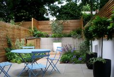 This is a fabulous way to add height and drama to what is essentially a small courtyard garden, and the sense of privacy gives a feeling of a secluded oasis. Garden design by Jenny Bloom Garden design. Small City Garden, Small Courtyard Gardens, Small Courtyards, Small North Facing Garden Ideas, Small Gardens, Patio Gardens, Modern Courtyard, Courtyard Design, Courtyard Ideas