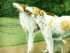 This animal painting marked by Louis Agassiz #Fuertes is taken from The Book of Dogs published in 1919 by The  National Geographic Society, Washington D.C., U.S.A.  Louis Ag... #fuertes