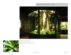 Tree Frog Vivarium by Roy Lorieo at Coroflot.com