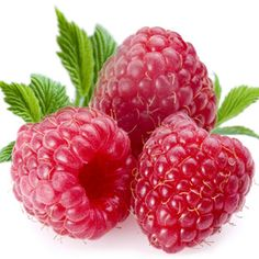 A divine raspberry smoothie. http://www.lucilleroberts.com/blog/http:/www.lucilleroberts.com/blog/liverite-diet-shake-recipe-decadent-chocolate-raspberry/