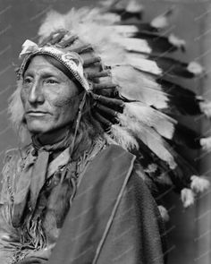 Whirling Horse American Indian Close Up 8x10 Reprint Of Old Photo