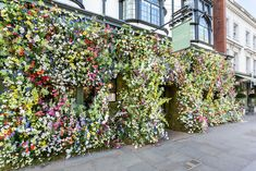 As The Chelsea Flower Show kicks off next week, we round up the best places in London for a floral feast. Chelsea Flower Show, Mayfair Restaurants, The Ivy Chelsea, Best Places In London, Chelsea Garden, Underwater Theme, Luxury Restaurant, Green Backgrounds, London Travel