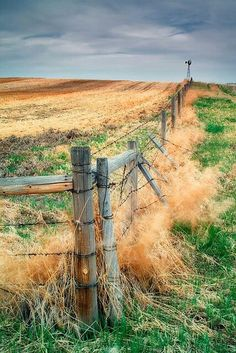 4 Keen Tips AND Tricks: Wooden Fence Door low fence driveways.Outdoor Fence Curb Appeal fence and gates pictures.Picket Fence Tv Show. Country Fences, Country Farm, Country Life, Country Living, Country Roads, Barbed Wire Fencing, Wire Fence, Wooden Fence, Brick Fence