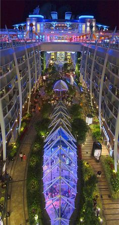 On the Allure of the Seas cruise ship. The garden taken from the 16th deck. MAGICAL!