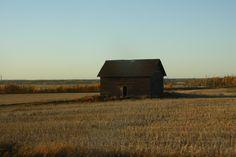 Prairie scene just outside Edmonton Alberta Canada (Photo by Anita, October 2010)