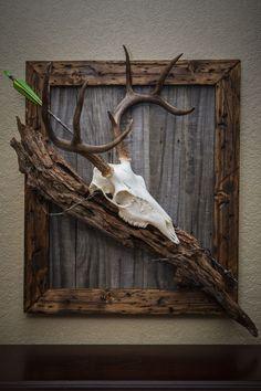 1000+ ideas about Deer Mounts on Pinterest | Barn Board Wall ...