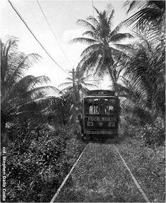 vintage trinidad