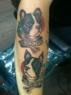 One of these days...the tattoo, not two boston terriers.