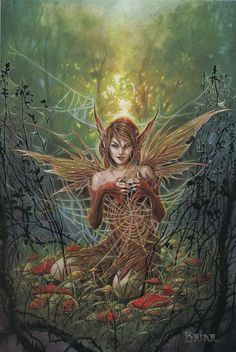 The Cobweb Fairy                                                                                                                                                                                 More