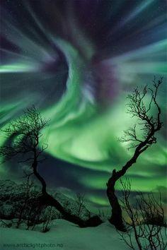 APOD: Creature Aurora Over Norway 2013 Nov 06)  Image Credit & Copyright: Ole C. Salomonsen (Arctic Light Photo)