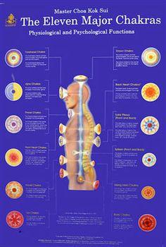 Resultado de imagem para pranic healing chakras