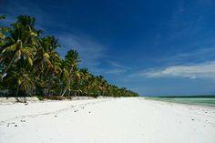 Coconut trees and white sand at Bwejuu. Photo via pbase.com