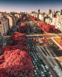 Autumn in Buenos Aires, Argentina