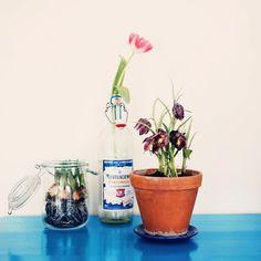 Spring! Blogg för Krickelin | Lovely Life