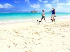 Lanikai Beach/kailua/Hawaii