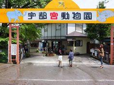 宇都宮動物園の写真2