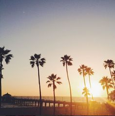 palm trees x beach :: Manhattan Beach, California The Places Youll Go, Great Places, Beautiful Places, Oh The Places You'll Go, Manhattan Beach California, California Dreamin', No Bad Days, City Of Angels, San Diego