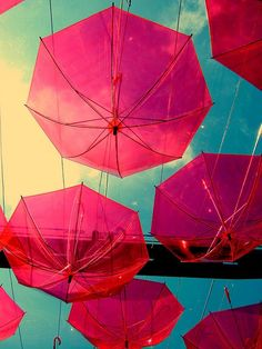 reddish-pink umbrellas