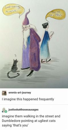 McGonagall and Dumbledore