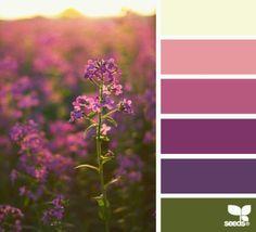 Kathy davis colors