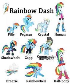 #rainbowdash #mlp